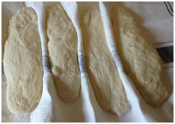 dough loaves
